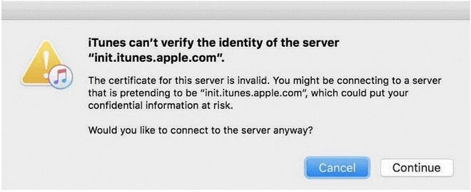 identity of the server